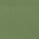 Green glossy 1321 C