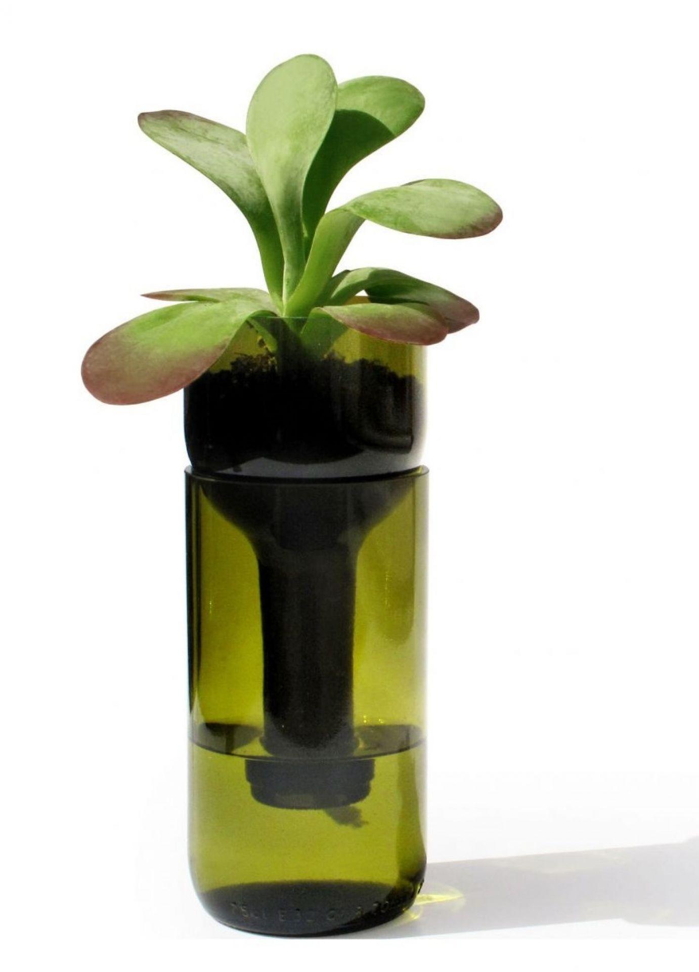 Self Watering Bottle Side by Side green
